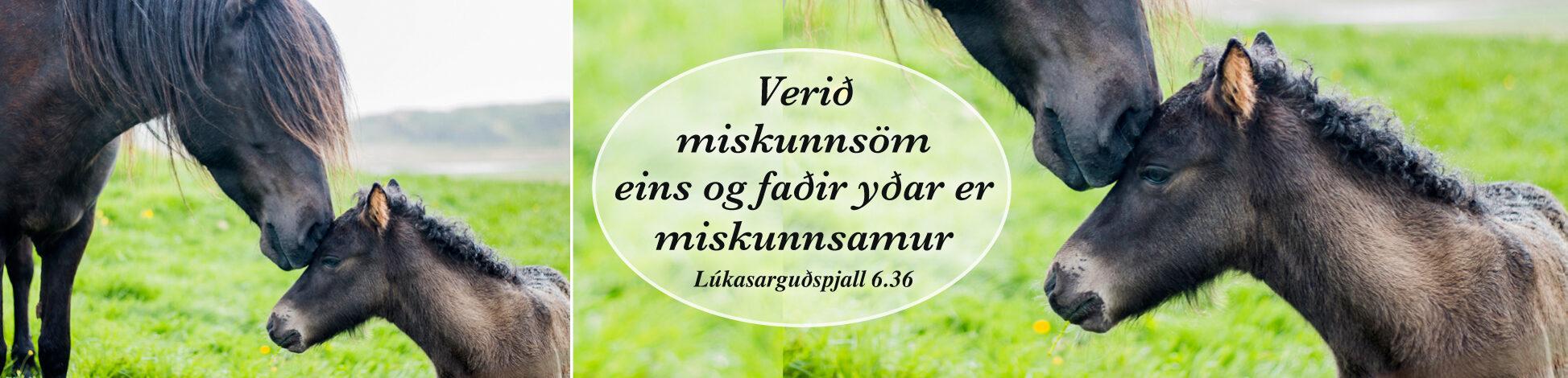 Lykilorð